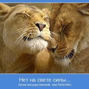 Михаил Матюхин on My World.