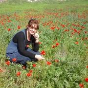Виктория Венингер (Мазниченко) on My World.